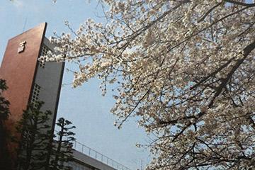 光塩女子学院初等科コース